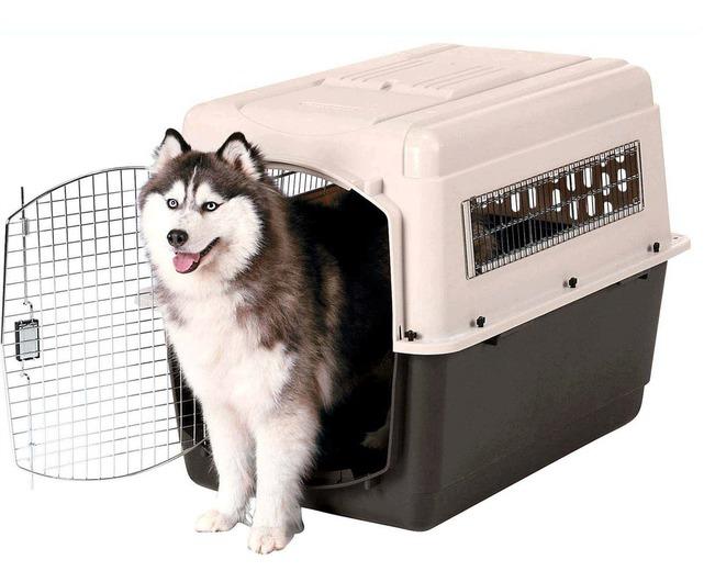 Jaula transportadora para perro gde vari kennel petmate for Jaulas de perros
