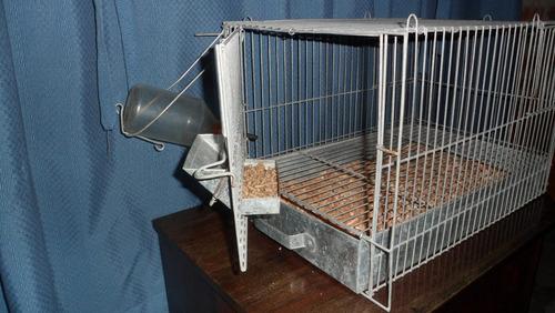 jaulas para conejo a domicilio