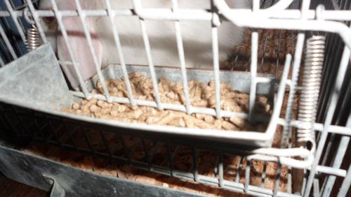 jaulas para conejo con bandeja alta a domicilio