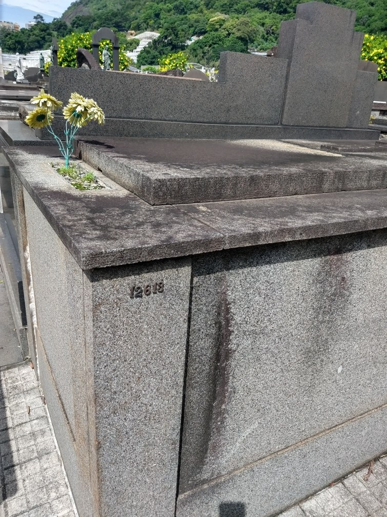 jazigo perpetuo cemitério são joão batista