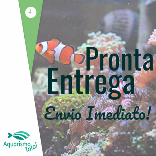 jbl aqua terra tool sp espátula p aquários plantados 30,5cm