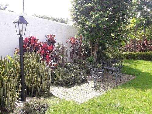 jc alquiler casa en colinas de guataparo cod 321021