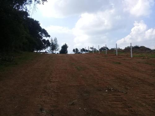 jc- respire ar puro, terreno em área verde