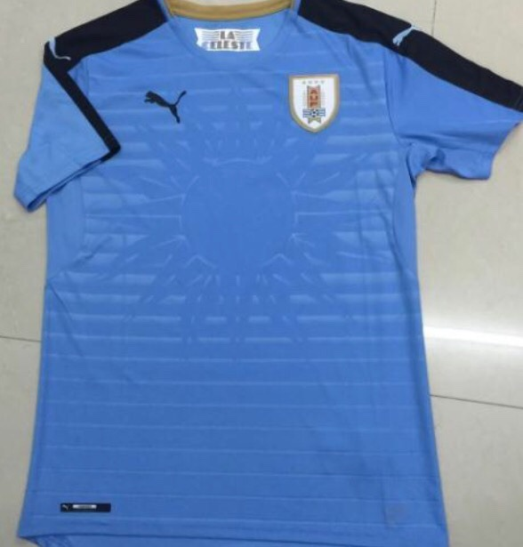 Jersey Uruguay 2016 Copa América Centenario Rotulado -   960.00 en ... 2f8c5a2682bbb
