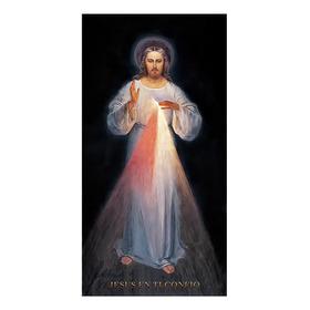 Jesús Divina Misericordia Giclee Lienzo Importado 50x106cm