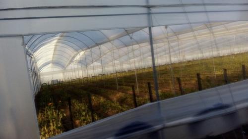jg labores agroindustriales sas