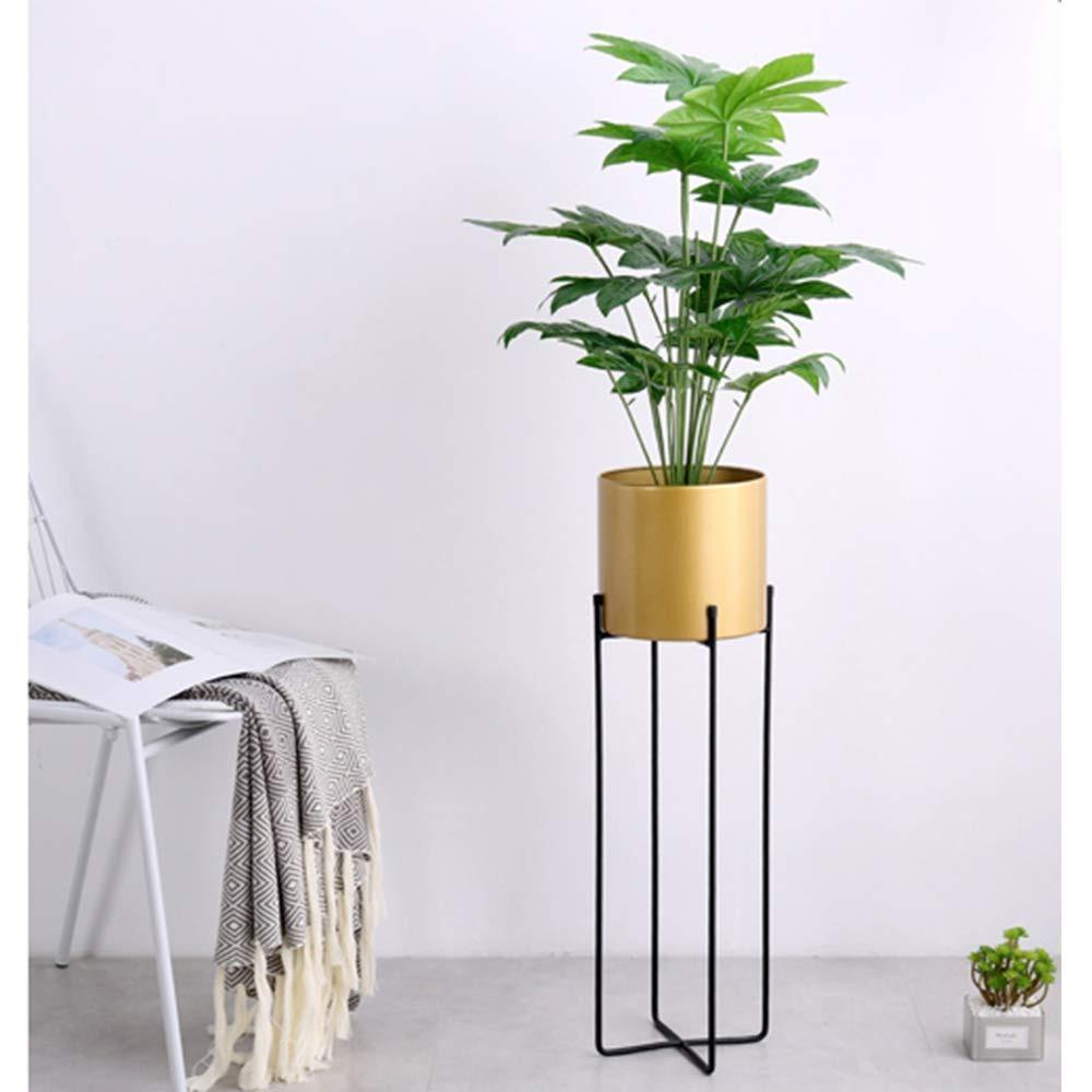 Joanna S Home Tall Soporte Para Plantas De Interior Con Mac