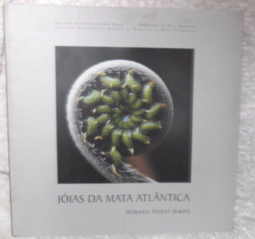 jóias da mata atlântica - atlantic forest jewels
