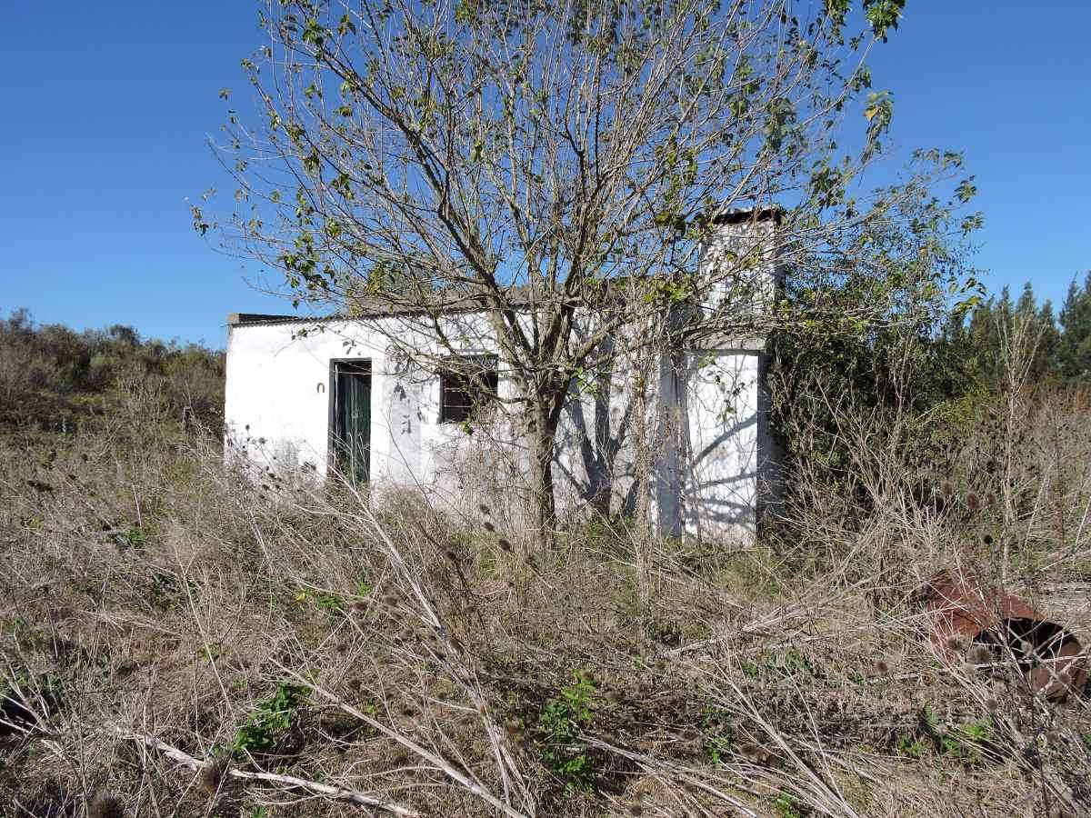 juanicó casa galpón apta banco inmobiliaria harretche
