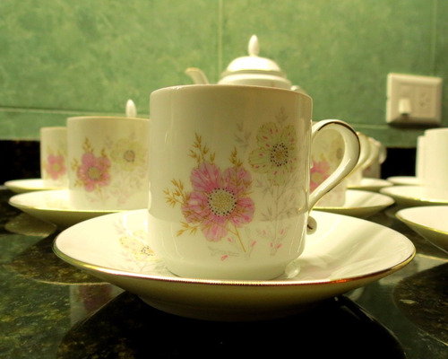 juego de café porcelana verbano serie otoñal. 25 piezas.