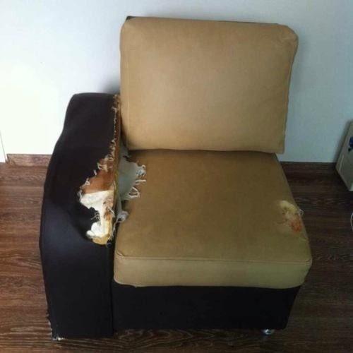 Juego de muebles 2 piezas para tapizar con cojines   bs. 180.000 ...