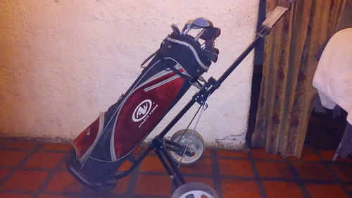 juego de palos de golf,bolsa y carrito
