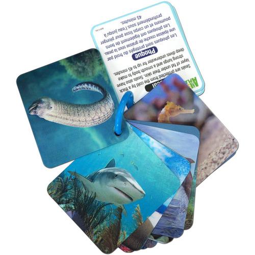 juego inteligente animal planet 3d flash cards, animales