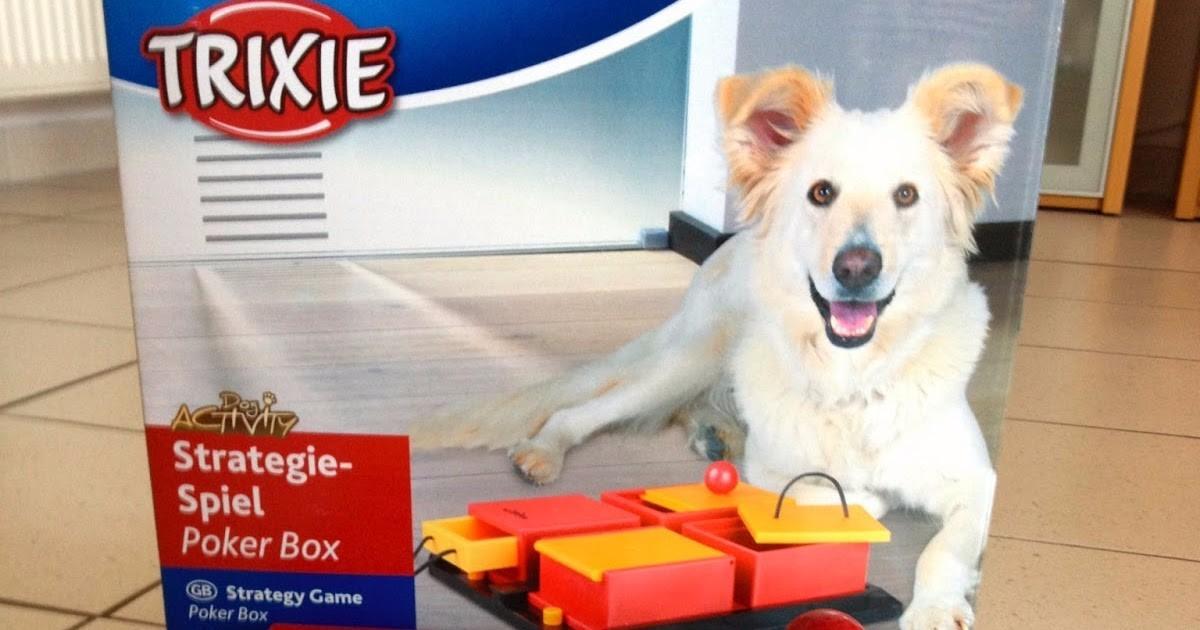 Juego Interactivo Para Perros 1 800 00 En Mercado Libre