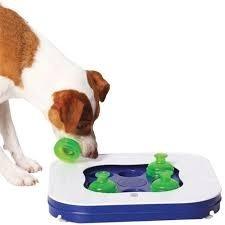 Juego Interactivo Para Perros Dog It 390 00 En Mercado Libre