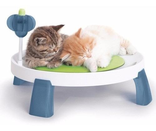 juegos para gatos cat it senses zona de bienestar