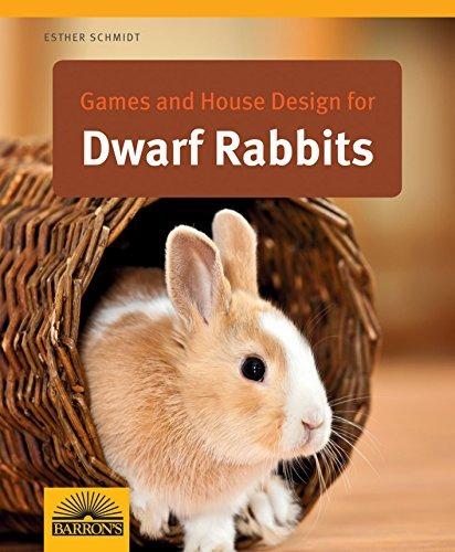 Juegos y dise o de casas para conejos enanos en - Casas para conejos enanos ...