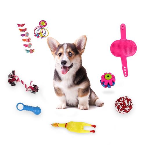 juguete de mordedura cuerno de pollo  para mascotas
