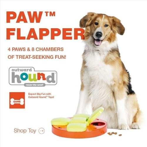 Juguete Interactivo Para Perro Premios Paw Flapper Juego 380 00