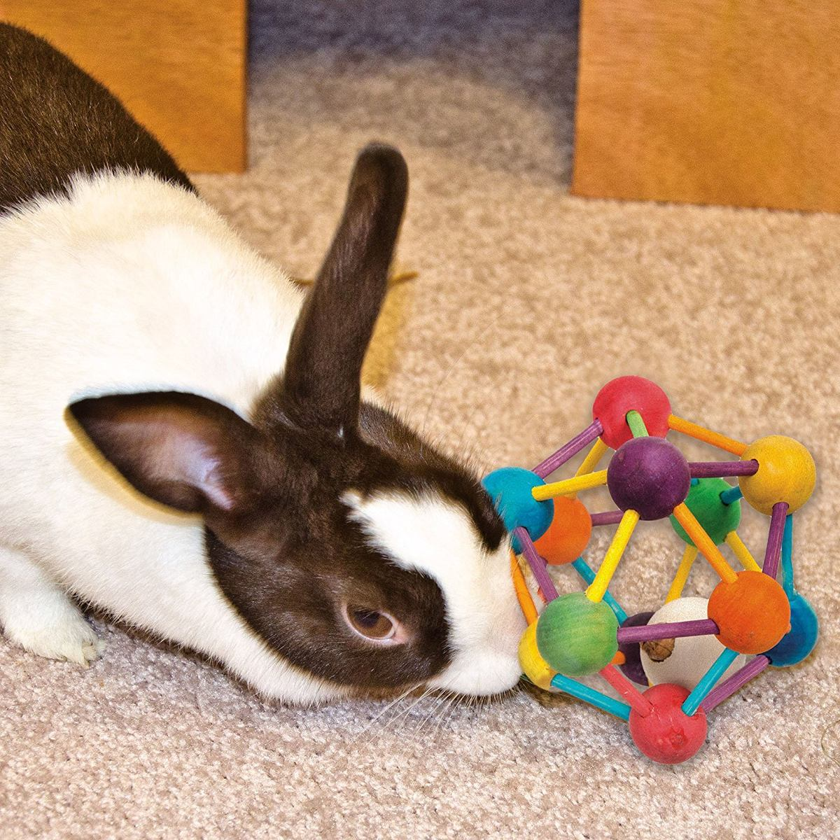 Juguete Para Mascotas Artículos De Fabricación De Madera Ató ...
