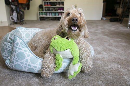 juguete para perro