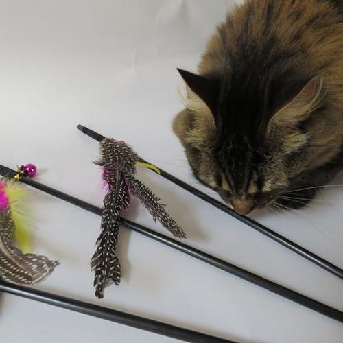 juguete varitas para gatos con plumas