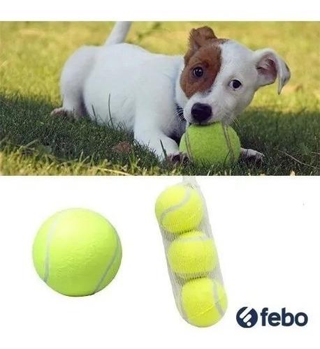 juguetes para mascotas perro