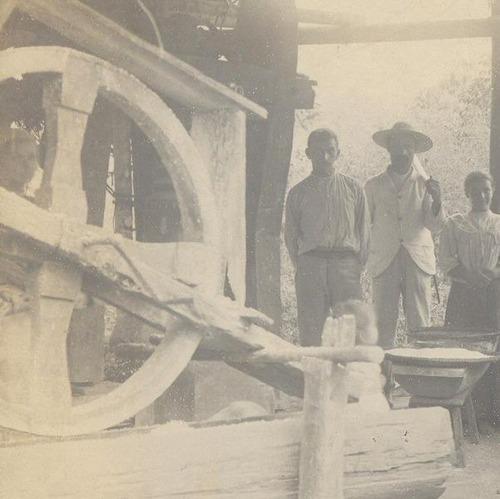 juquiá - são paulo - fábrica de farinha - 31011505