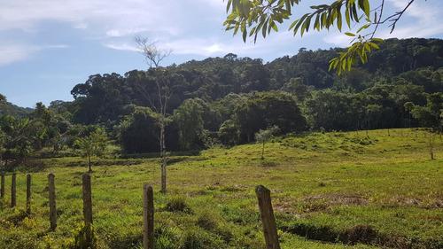 juquiá/05 lagos/pasto/cultivo de palmito/ref: 04857