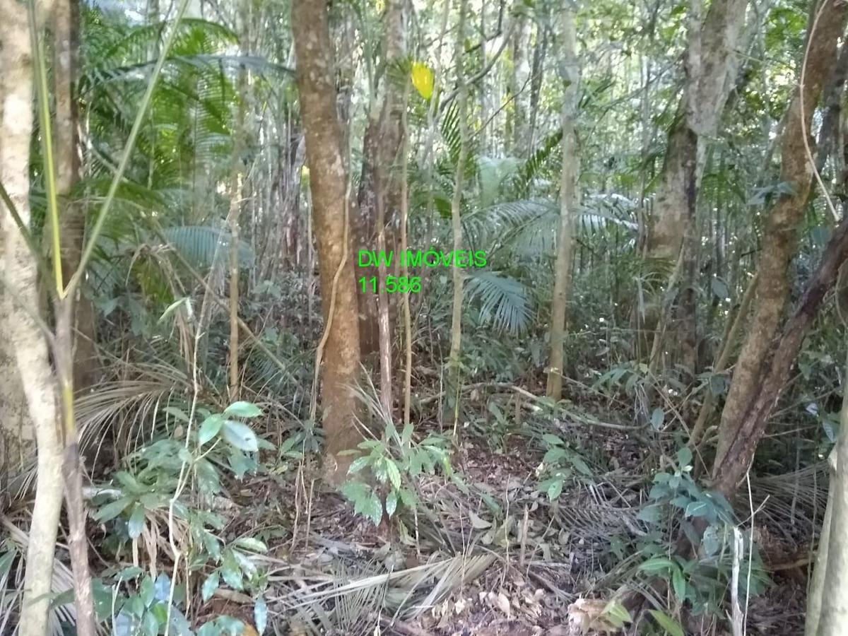 juquitiba / terreno / bosque / só r$.50.000 - 04899 - 34358265