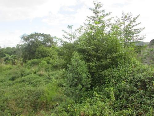 juquitiba - terreno/1.162 mts/murado/gramado ref 04403