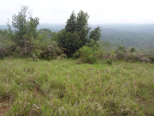 juquitiba - terreno/5.400 mts/semi plano ref: 04222