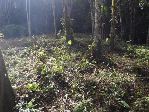 juquitiba - terreno/mata/bosque/riacho ref: 04193