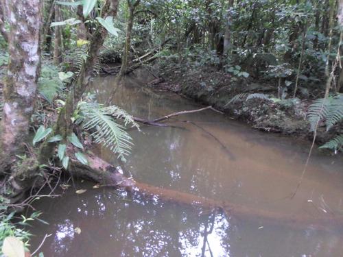 juquitiba-terreno/plano/bosque/riacho só r$ 70000 ref: 04060