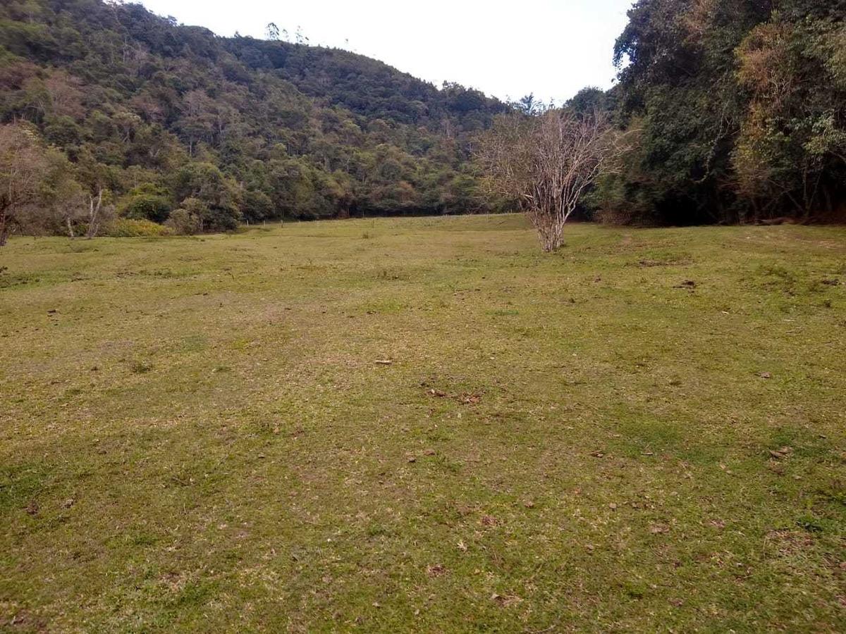 juquitiba/belos terrenos á partir de 1.400 mts/rio/ref:04894