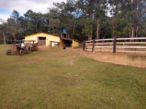juquitiba/criação de cavalos/09 baias/rio/ref:04893