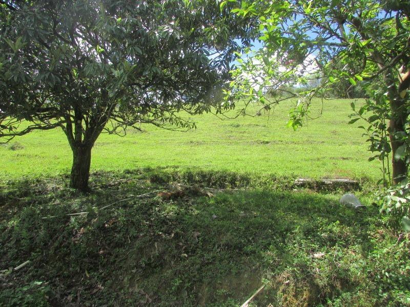 juquitiba/lindo terreno c/ vista p/lago/morar/ref:04920