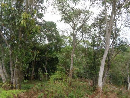 juqutiba - terreno/bosque/mata/pomar ref: 04227