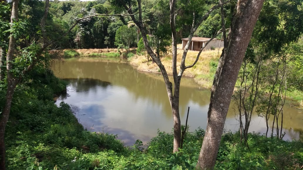jv terrenos planos p/chácara com água e luz em ibiúna