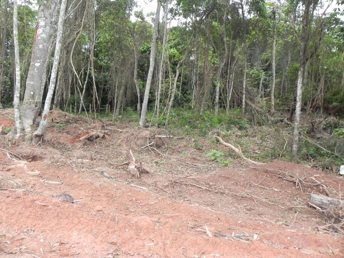 (k.a) lotes na beira do asfalto, fundo para represa e plano,