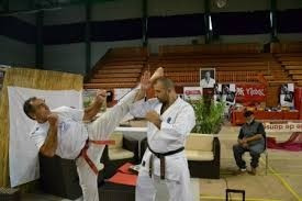 karate tecnicas de competicion (a su correo)promo3x2