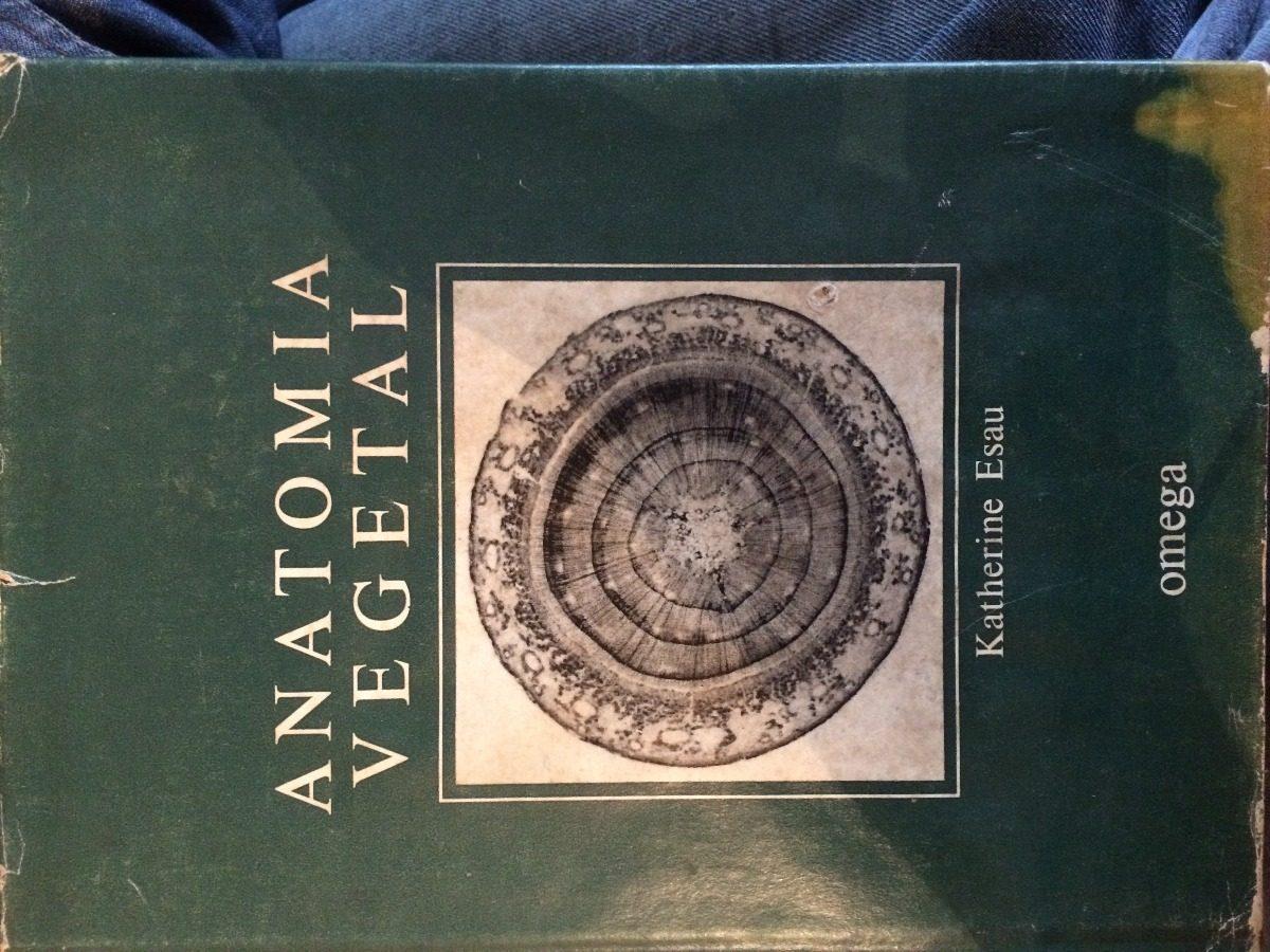 Asombroso Carteles De Las Vías Anatómicas Inspiración - Imágenes de ...