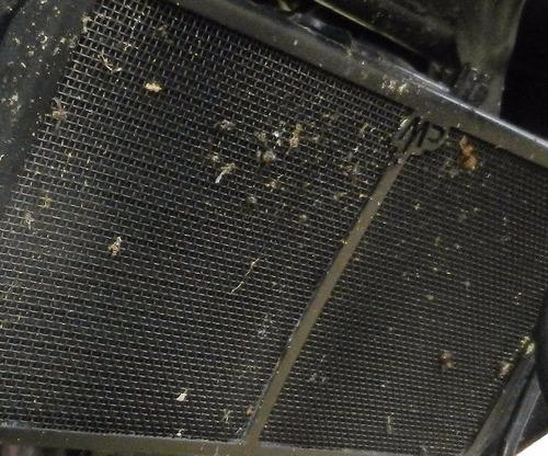 kawasaki versys 650 protector cubre radiador motoperimetro ®
