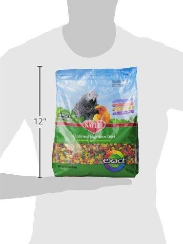 kaytee exact rainbow prima diaria de nutrición para loros y