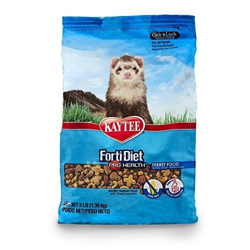 kaytee forti diet pro health alimentos para animales pequeño