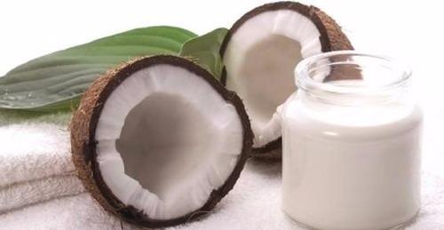 kefir de leite de coco + brinde kefir de água de coco
