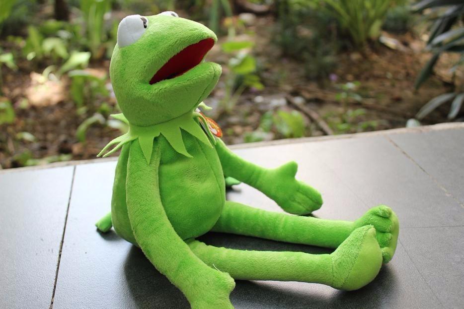 Kermit The Frog Rana Rene Envio Gratis Ty Peluche 40 Cm -   465.00 ... 1aab59fa7d3