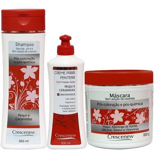 kit 1 shampoo, 1 creme 1 máscara cabelo tingido e ressecado