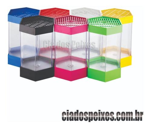 kit 10 beteiras plastica sextavada  colorida 1 l