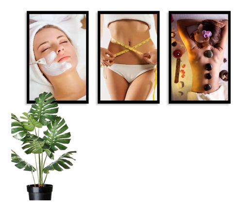kit 3 quadros decorativos estética corporal spa clínica